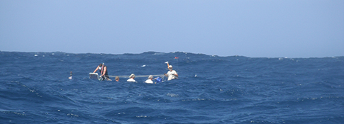 Image of Team Hallin Ocean